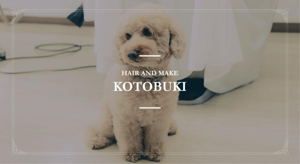 5月22日 ヘア&メイクKOTOBUKI 新装オープン